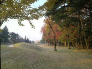 kawama1.jpg