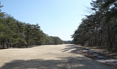 nikko-3.jpg