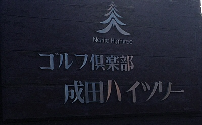 htree-1.jpg